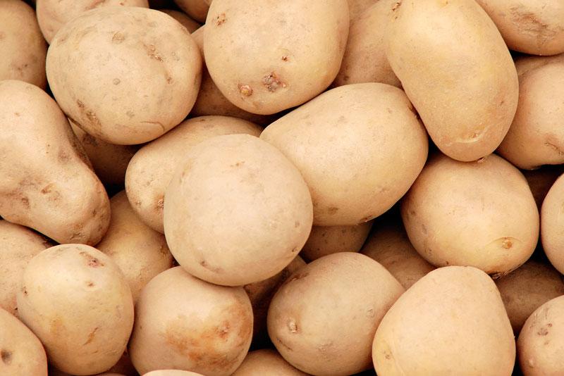 О картофeле